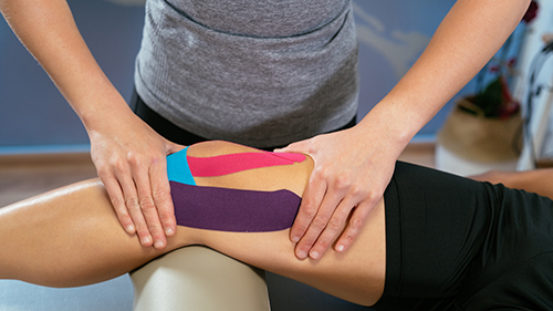 Kinesiology Jobs: What Types of Sports Jobs Can I Get with a Kinesiology Degree?