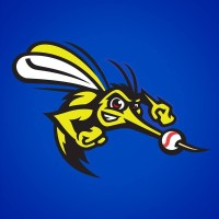 Sugar Land Skeeters Jobs in Sports Profile Picture